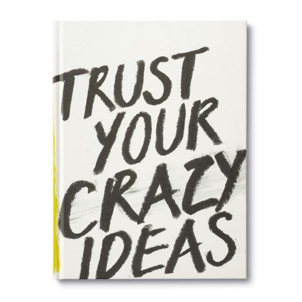 Trust Your Crazy Ideas - Book Inspiration